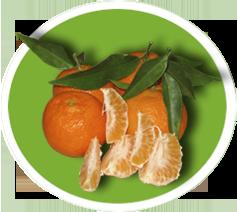 Mandarini Bio
